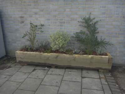 wall planter 2